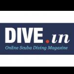 logo_divein
